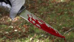 Knife with blood 300x169 - Man Invited By A Father To Help Beat His Son, Kills Him