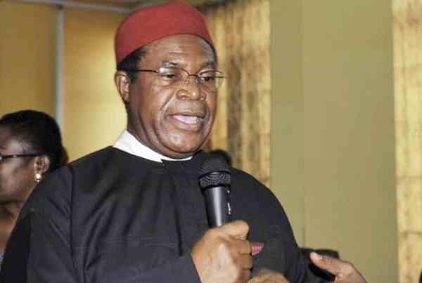 Nwodo Speaks On 'Biafra Agitation', Reveals What 'Igbo Elites' Want