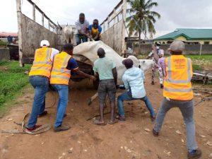 5f50f33c648b8 300x225 - Lagos State Government Arrest Cows, Close Down Abattoir