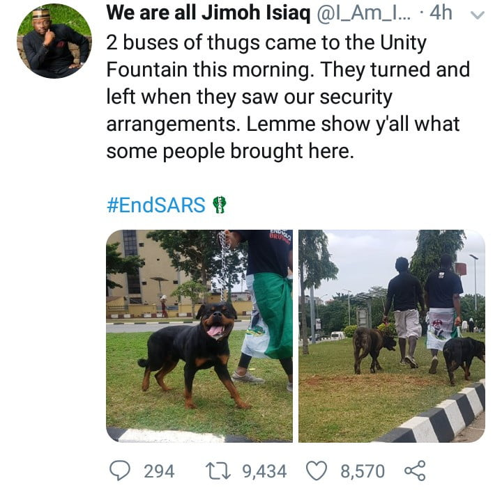 5f8b1fd77f7d1 - #EndSARS: Thugs Run Away On Sighting Protesters With Fierce Dogs