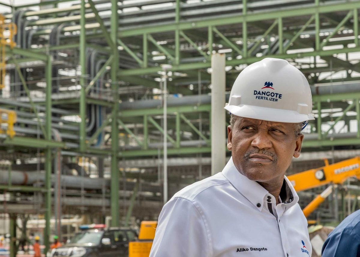 federal-government-excludes-dangote-cement-from-border-closure-naija-news
