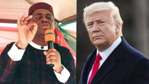 Femi Fani Kayode Donald Trump 300x169 - US Election: Fani-Kayode Reacts After Trump Statement On How Biden Won America's Election