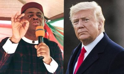 Fani-Kayode Reveals Importance Of Trump's Presidency To Nigeria