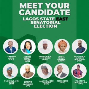 Lagos State Bye election Live Updates 300x300 - #LagosByeElections: Live Updates, Situation Reports And Results