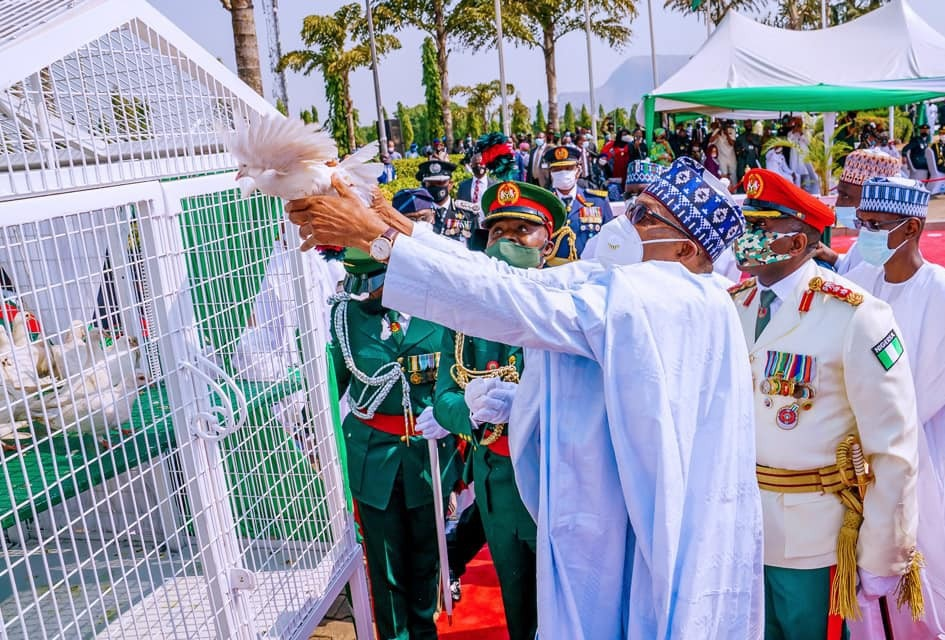 Finally, Presidency Reveals Why Pigeons Buhari Released Refused To Fly