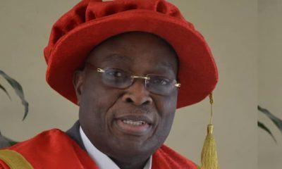 BREAKING: Damola Oke Appointed Acting LASU VC