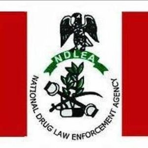 NDLEA Speaks On Sack Of Its Chairman, Abdallah
