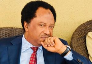 images281429 300x208 - Lifting 20Million Nigerians Out Of Poverty With 5k Will Be Miraculous – Shehu Sani Mocks Buhari Govt
