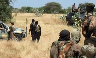 We Foresaw Rise In Boko Haram Insurgency - Peace Institute