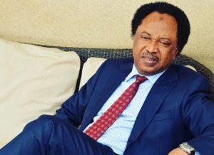 Shehu Sani new 300x218 - Shehu Sani Speaks On Why Vice Presidents, Deputy Governors Are Silent In Nigeria