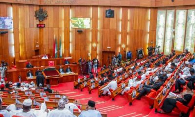 Ebonyi Killings: Senate Issues Directive To New IGP, Usman Baba