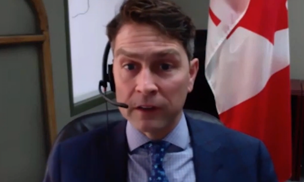 Canadian MP Apologizes After Appearing Naked During Video