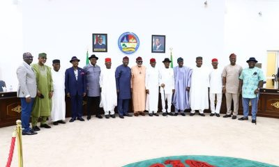 Presidency Condemns Southern Governors's Plan To Ban Open Grazing