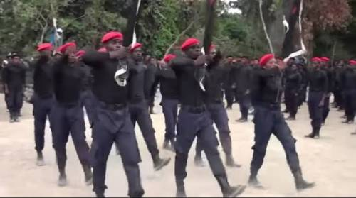 How ESN Members Beheaded Their Chief Priest In Imo – Police