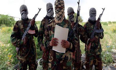 ISWAP Terrorists