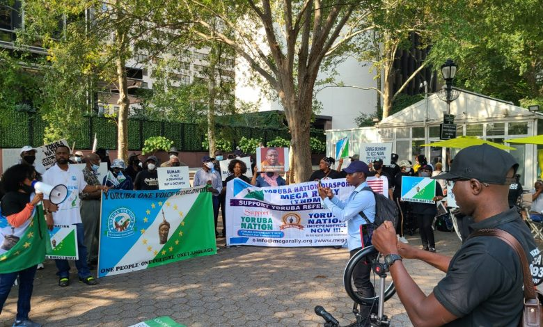 Yoruba Nation: Buhari Govt Sponsored People To Protest Against Us – Akintoye